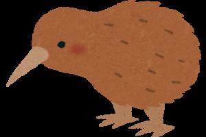 animal_kiwi